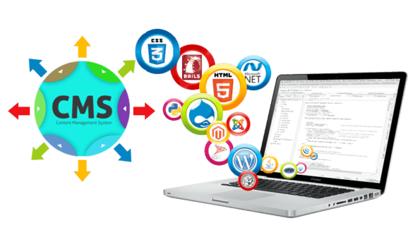 What is a CMS website development?